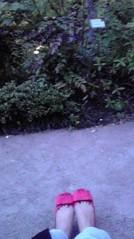滴草由実 公式ブログ/しず散歩 画像1