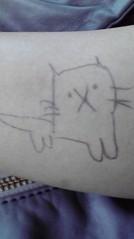 滴草由実 公式ブログ/猫はっけん! 画像1