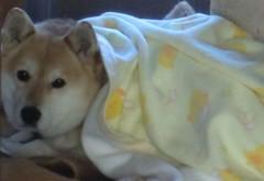 池田久美 公式ブログ/一番の寒さ 画像2