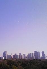 DADAS(ダダス) 公式ブログ/大嫌いなあいつの影が! 画像1