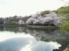 岡千尋(アズライト) 公式ブログ/三ッ池公園わず。 画像1