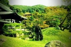 岡千尋(アズライト) 公式ブログ/新幹線なう(*^^*) 画像1