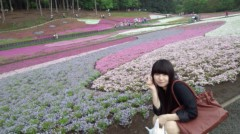 茜音(Girl〈s〉ACTRY) 公式ブログ/5月の芝桜。 画像1