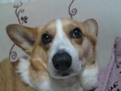 今井仁美 公式ブログ/やさしさ半分 画像1