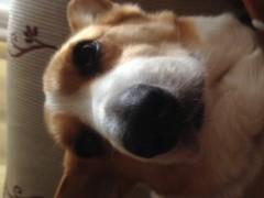 今井仁美 公式ブログ/おやつ時間 画像1