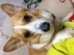 今井仁美 公式ブログ/thanks 画像2