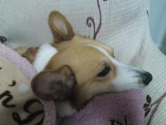 今井仁美 公式ブログ/おはっ♪ 画像1