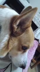 今井仁美 公式ブログ/ルンルン♪ 画像1