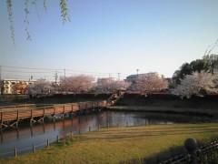 今井仁美 公式ブログ/sakura 画像1