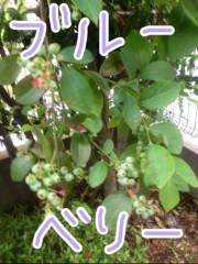 今井仁美 公式ブログ/すくすく 画像3