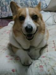 今井仁美 公式ブログ/主人公 画像1