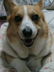 今井仁美 公式ブログ/Smile 画像1