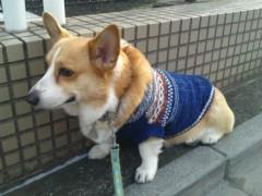 今井仁美 公式ブログ/やすみ 画像1