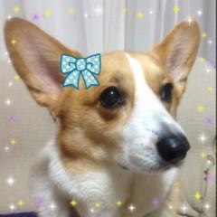 今井仁美 公式ブログ/変身 画像1