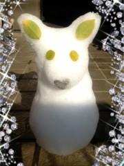 今井仁美 公式ブログ/Snow*Corgi 画像1