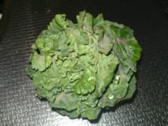 今井仁美 公式ブログ/野菜! 画像1