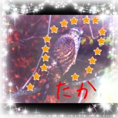 mina?♪(*^^)o∀*∀o(^^*)♪ プライベート画像 (no title)