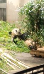 あちゅ(ツーライス) 公式ブログ/パンダ 画像2