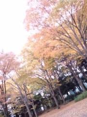 神木智佳 公式ブログ/いい景色 画像1