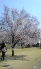 川上清美 公式ブログ/春を発見! 画像1