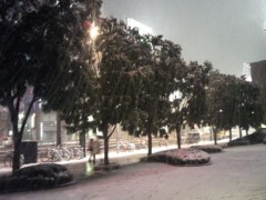 川上清美 公式ブログ/雪景色 画像1