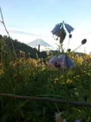 きりばやしひろき 公式ブログ/高山植物 画像1