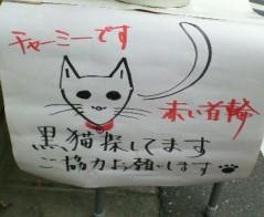 きりばやしひろき 公式ブログ/黒猫探してます 画像1