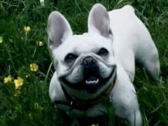 きりばやしひろき 公式ブログ/「笑う」ということ 画像1