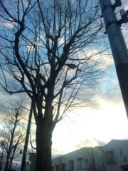 咲乃藍里 公式ブログ/冬。 画像1