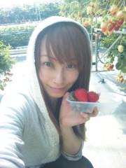 咲乃藍里 公式ブログ/いちご祭。 画像1