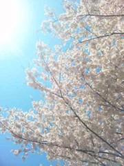 咲乃藍里 公式ブログ/いつかその時には。 画像1