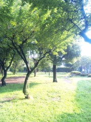 咲乃藍里 公式ブログ/朝。 画像1
