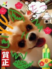 楠玲奈 公式ブログ/2012年☆ 画像2