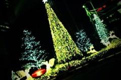 楠玲奈 公式ブログ/激馬大学芋(≧▽≦) 画像3