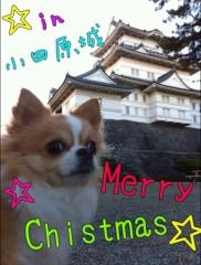 楠玲奈 公式ブログ/☆Merry   Chistmas!! ☆ 画像1