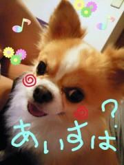 楠玲奈 公式ブログ/Happy  Birthday  To  Me☆  画像2