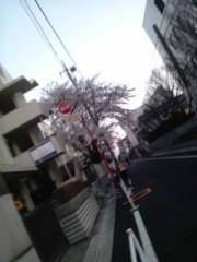 木乃下のの 公式ブログ/ぴよぴよギャー 画像3