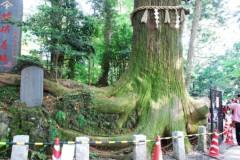 麻井美李 公式ブログ/スゴすぎ!タコ杉! 画像2