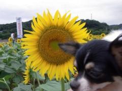麻井美李 公式ブログ/一体化ってこういうこと♪ 画像3