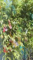 古郡ひろみ 公式ブログ/笹の葉さらさら 画像1