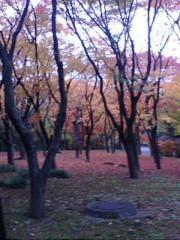 古郡ひろみ 公式ブログ/お散歩途中で 画像1