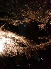 古郡ひろみ 公式ブログ/夜桜 画像1