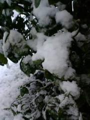 古郡ひろみ 公式ブログ/初雪 画像1