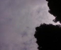 古郡ひろみ 公式ブログ/今日のお天気 画像1