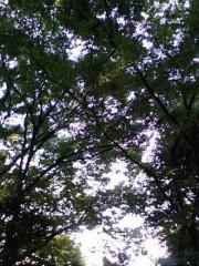 古郡ひろみ 公式ブログ/癒やし 画像1