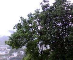 古郡ひろみ 公式ブログ/遠い日の歌 画像1