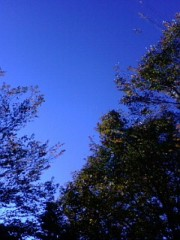 古郡ひろみ 公式ブログ/今朝の空 画像1