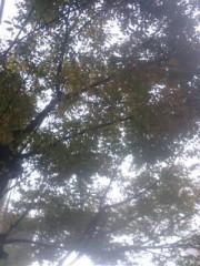 古郡ひろみ 公式ブログ/曇り空 画像1
