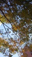 古郡ひろみ 公式ブログ/秋の空 画像1