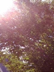 古郡ひろみ 公式ブログ/グリーン 画像1